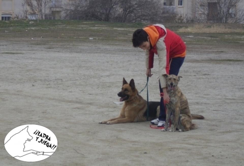 Adiestramiento Canino - ¡¡Ladra y Juega!!