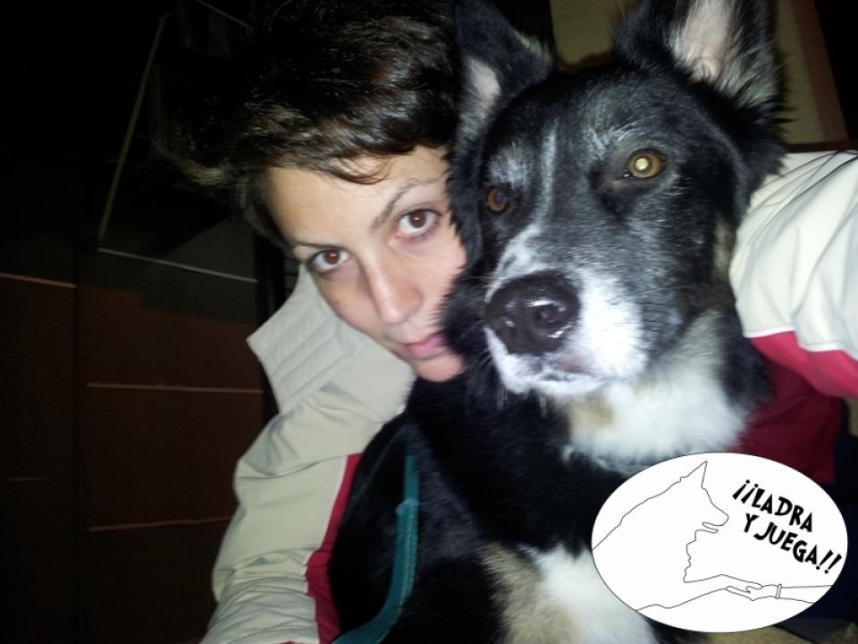 adiestramiento canino Ladra y Juega